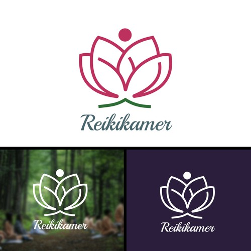 Reikikamer - Chakra, Alternative medicine