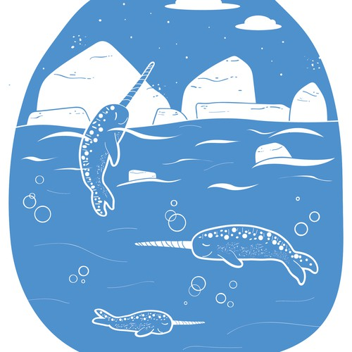 Narwhal illustration / design