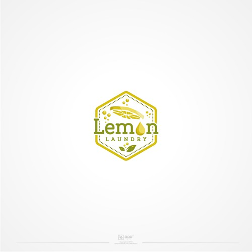 Logo concept for laundry business