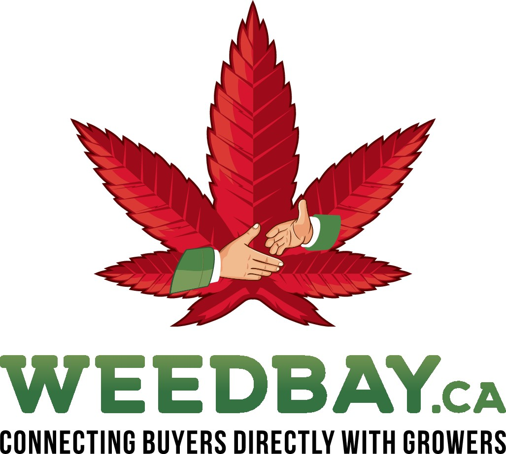 LOGO FOR WEEDBAY WEBSITE. ITS LIKE EBAY BUT FOR WEED!