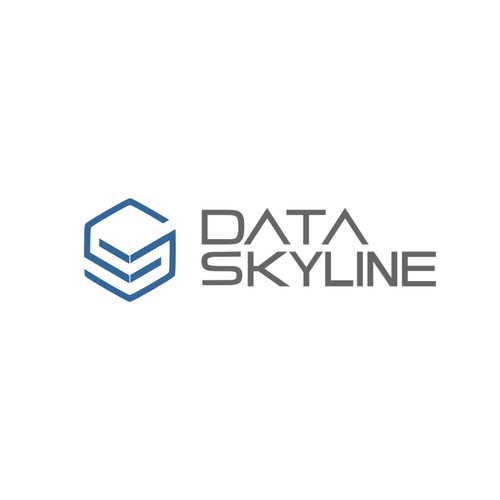 Create the next logo for Data Skyline