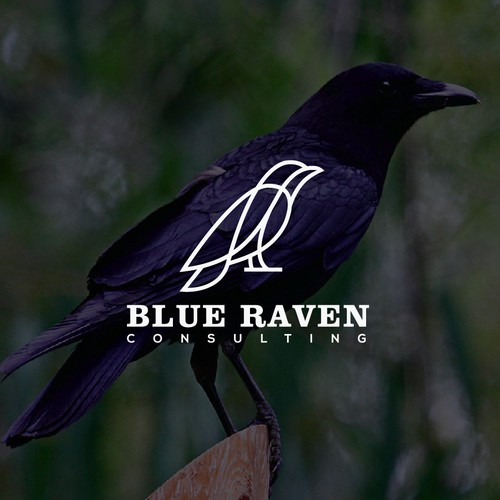 Creat logo From Blue Raven