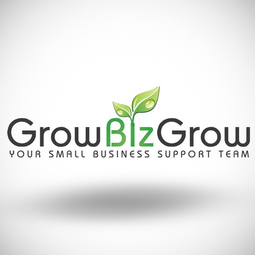 Help us build an awesome new logo for Grow Biz Grow!