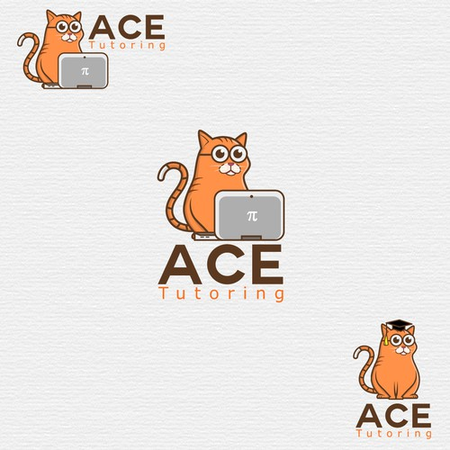 Ace tutoring design