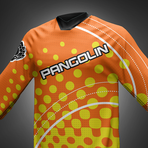 Capturing Jersey for Young Mountain Bike Apparel Company (Multiple winners possible)