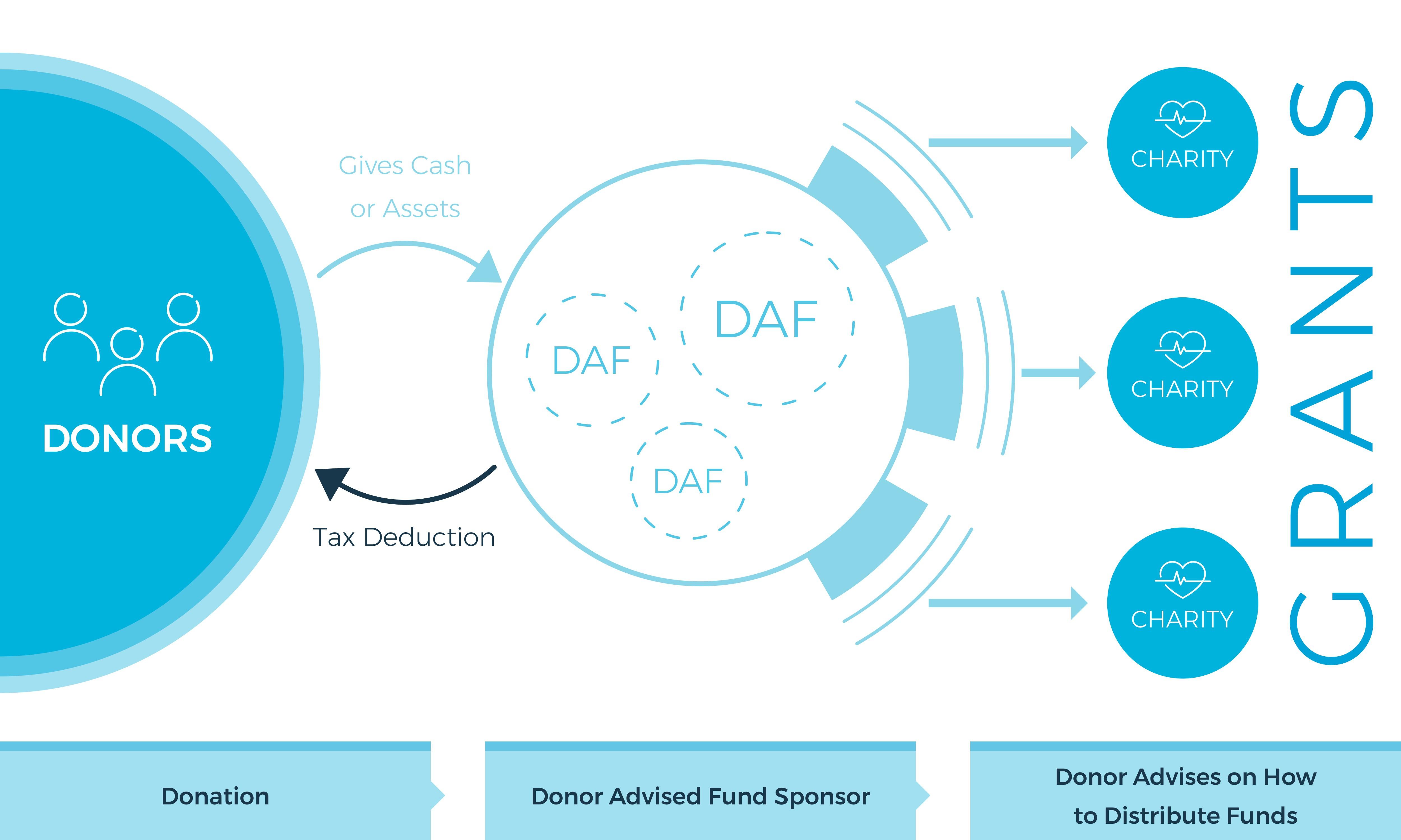 Donor Advised Fund Visual