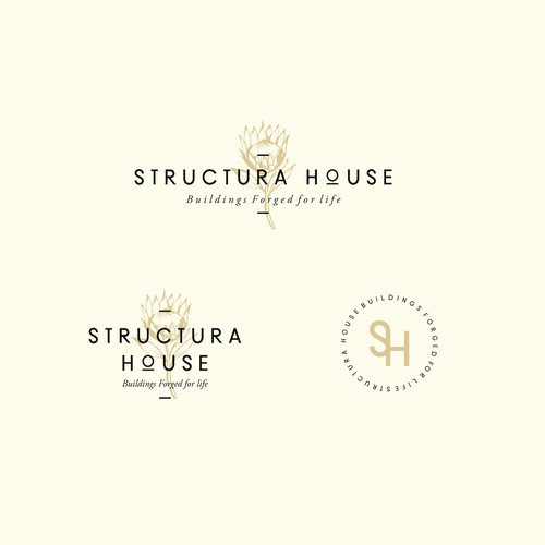 concept for Structura House