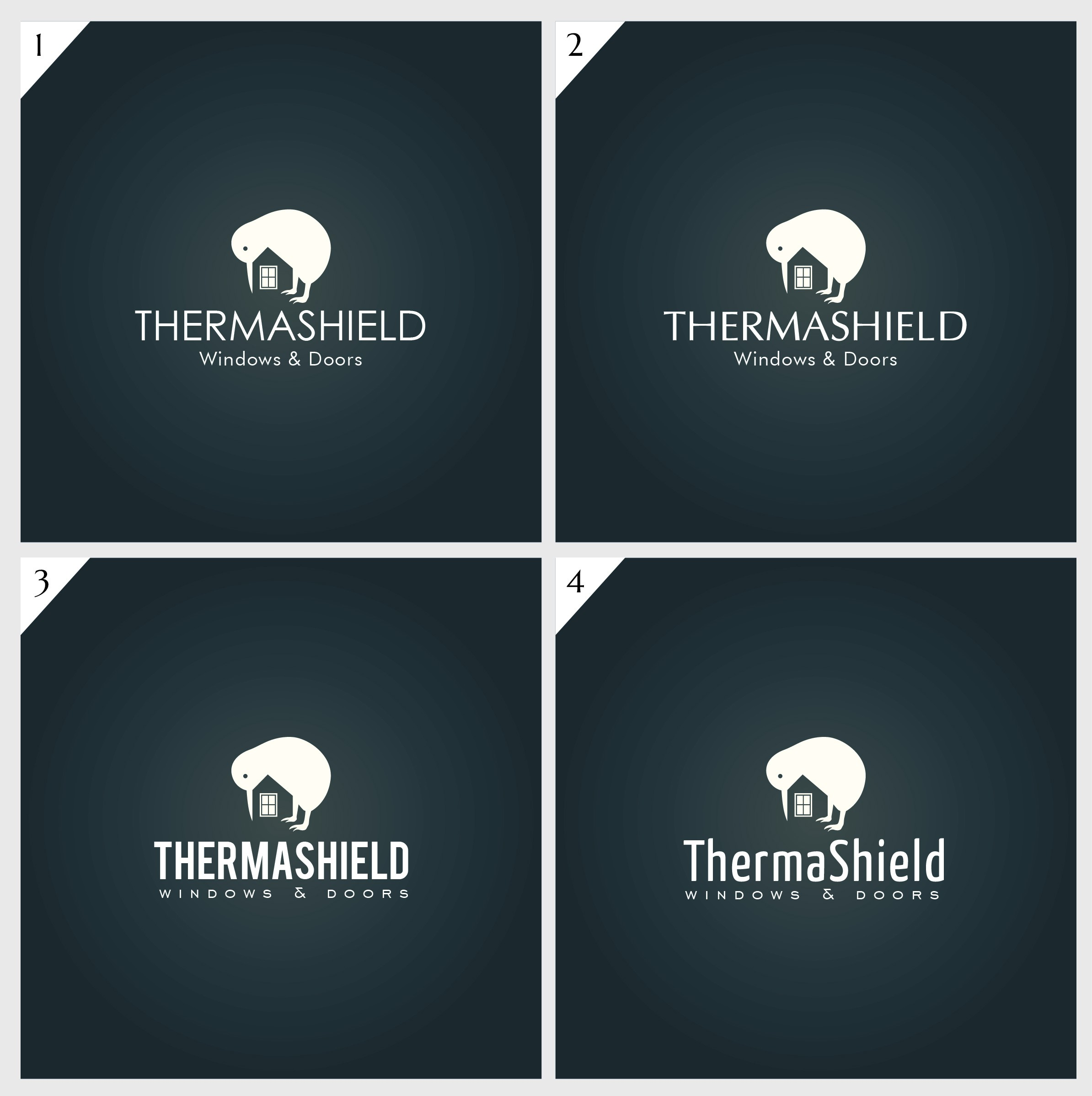 THERMASHIELD needs a powerful logo to get remembered!!!