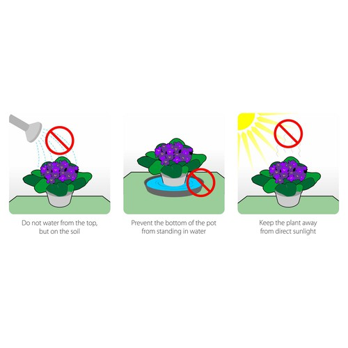 How take care of plants