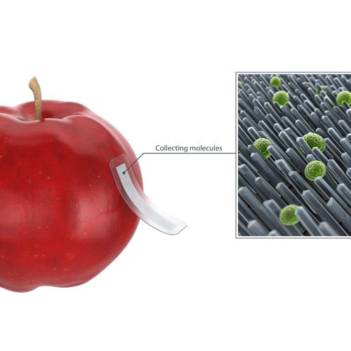 apple testing