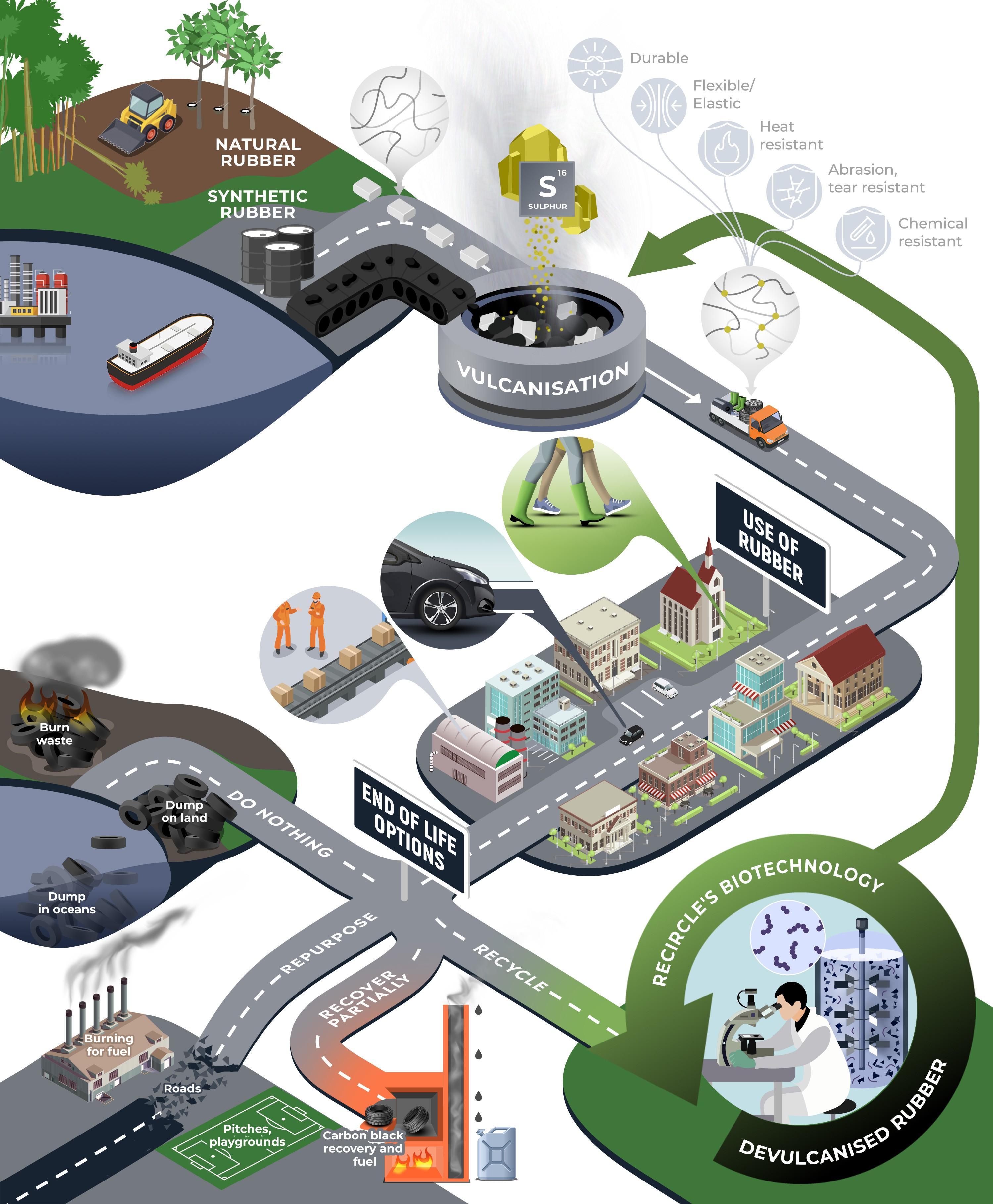 Recircle - Biotech recycling process graphic