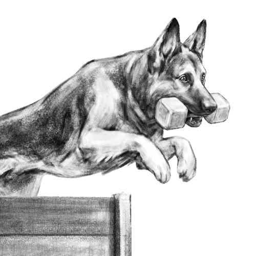 Dog sports illustration.