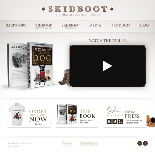 New website design wanted for Skidboot