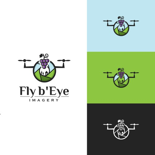 Fly b'eye Imagery Logo