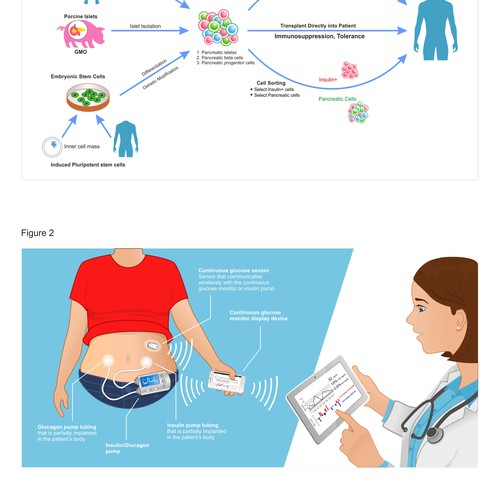Scientific Drawings for Publication