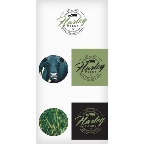 Logo Design for Organic Beef Breeder