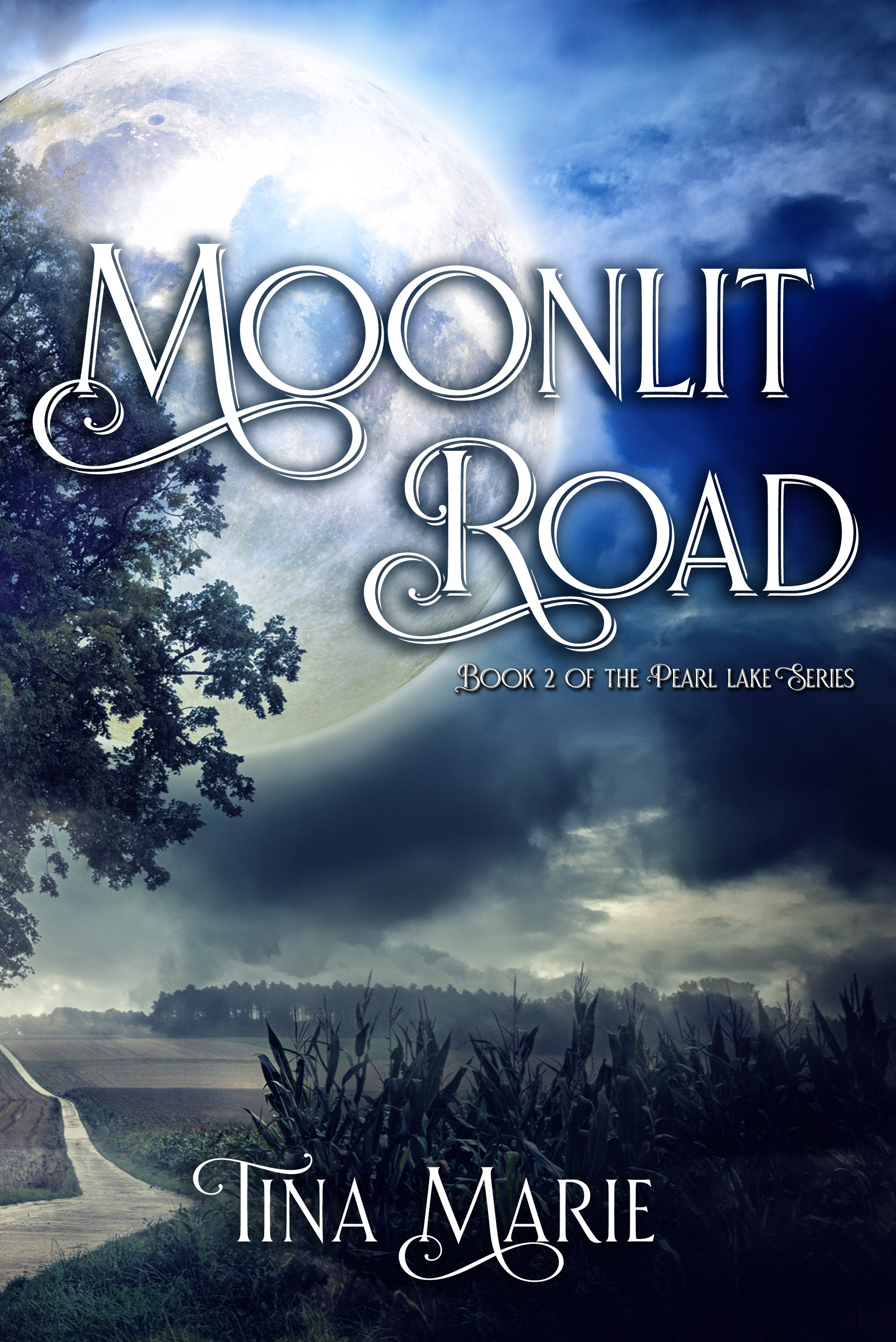 One Moonlit Road