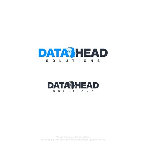 Logo concept for Data Head Solutions.