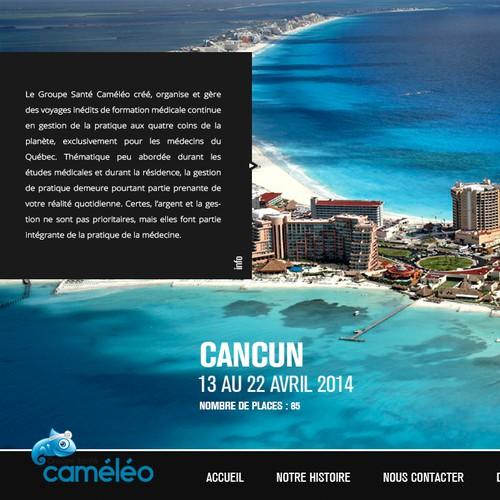 New website design wanted for Cameleo