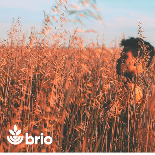 Logo Concept for Brio