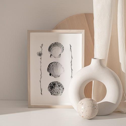 Flowers & Seashells