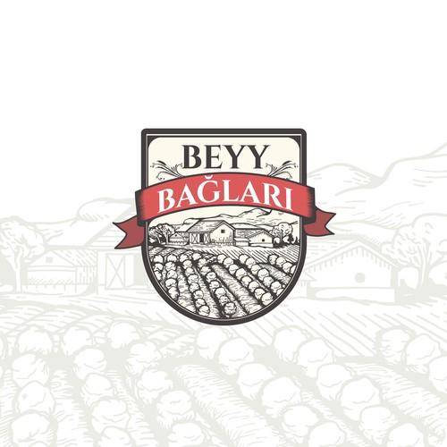 BEYY BAGLARI