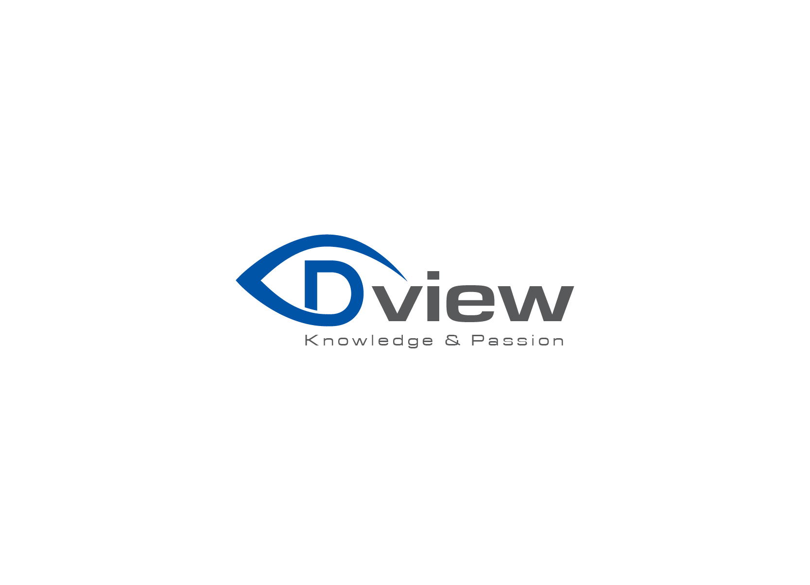 Convey in a pleasing and modern logo the digital era knowledge firm Dview