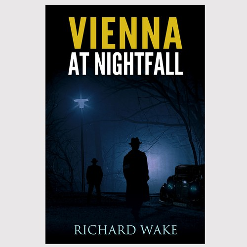 Vienna at Nightfall