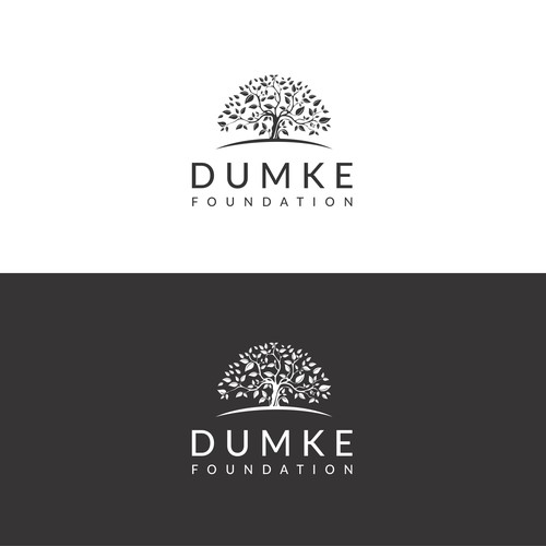 New Logo for Established Family Foundation
