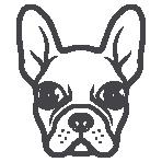 Bark Union (New Pet Brand)