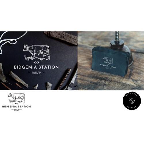 Bidgemia Station