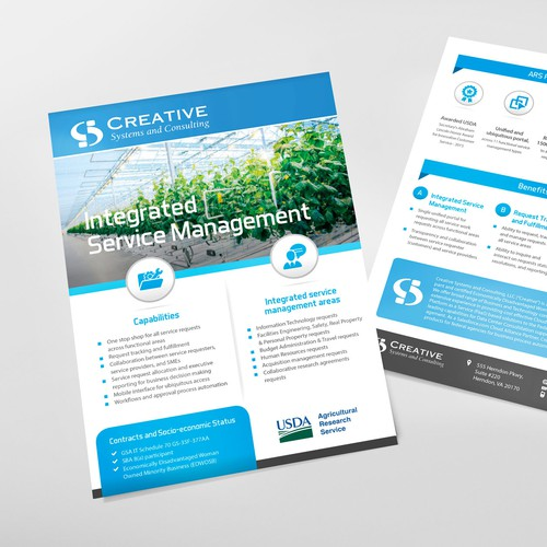 Flyer Creative Systems & Consulting