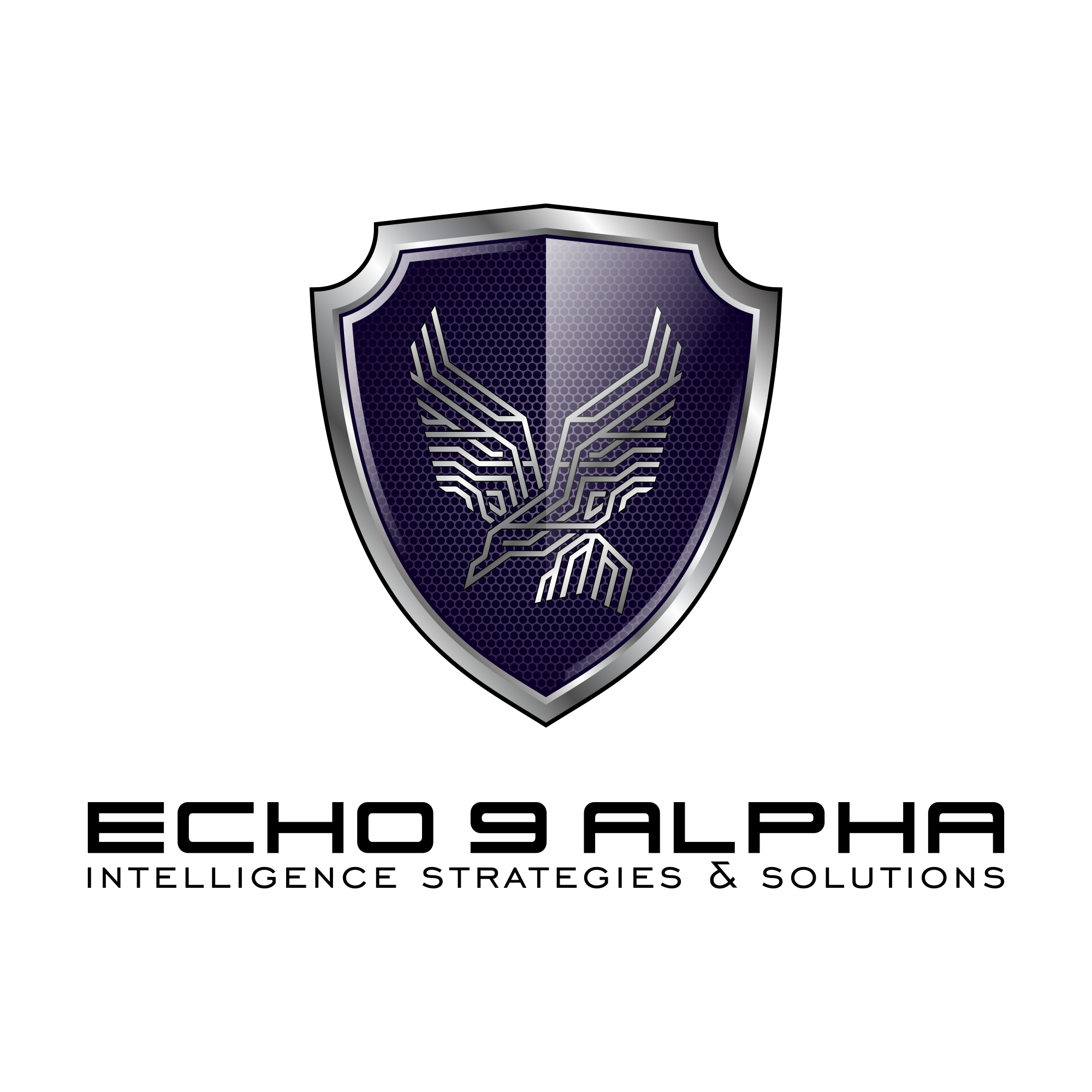 Veteran owned intelligence and threat consulting logo