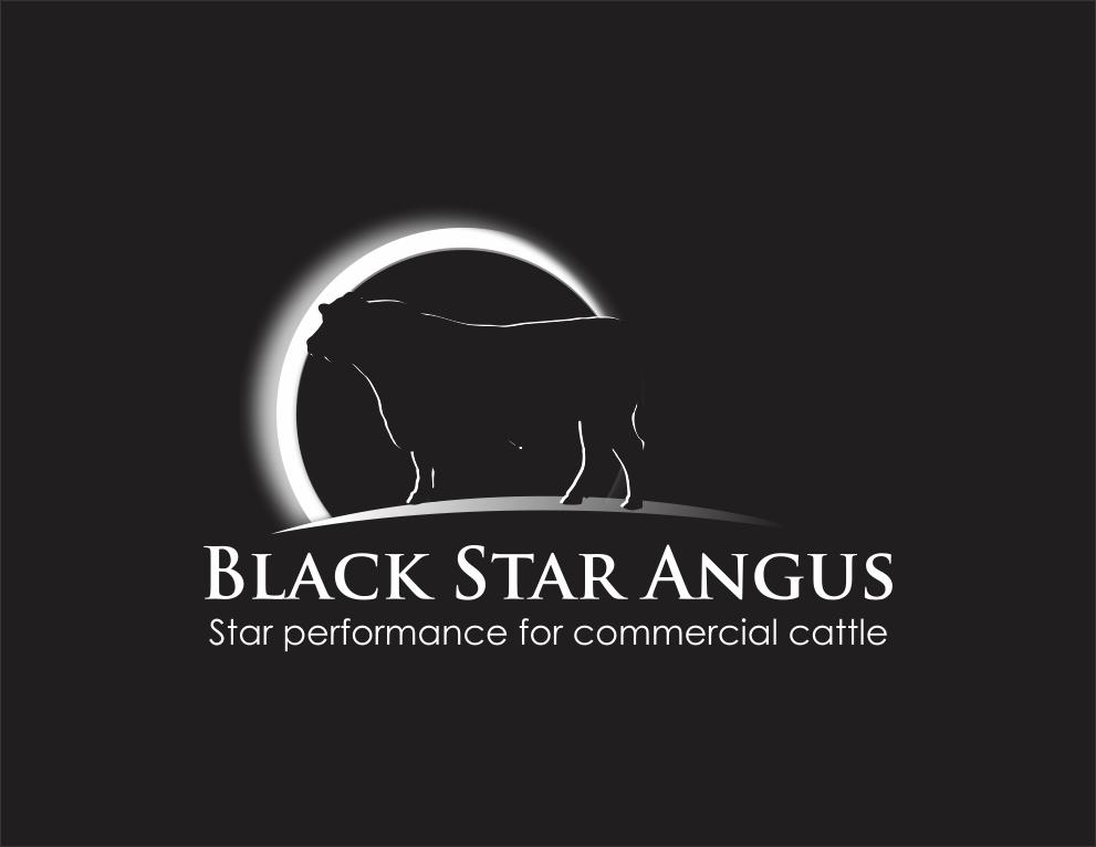 ★★★Black Star Angus ~ Logo Contest!★★★