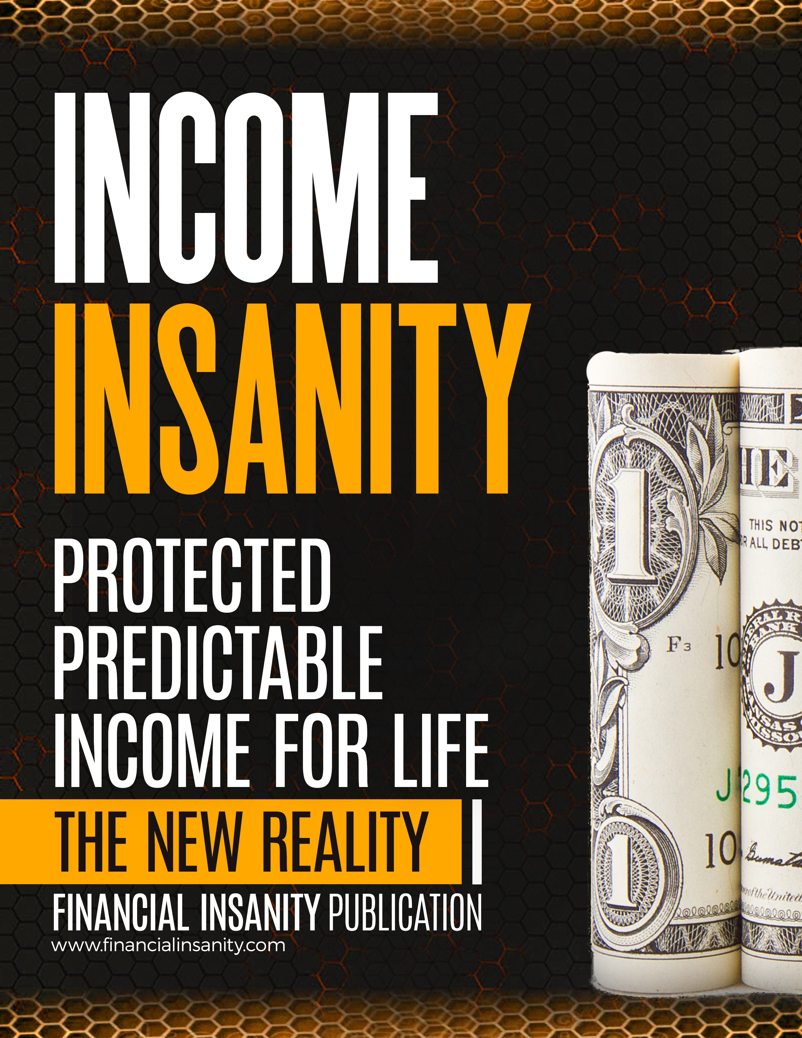 Financial Insanity eBook Cover Update