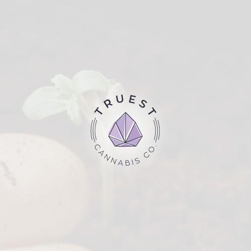 Modern logo for cannabis growing brand