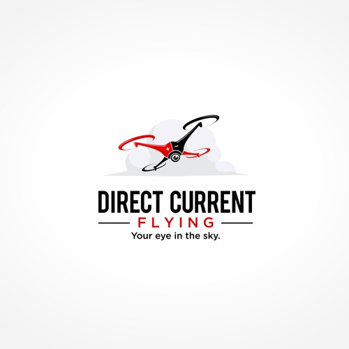 Logo for Drone DC Flying
