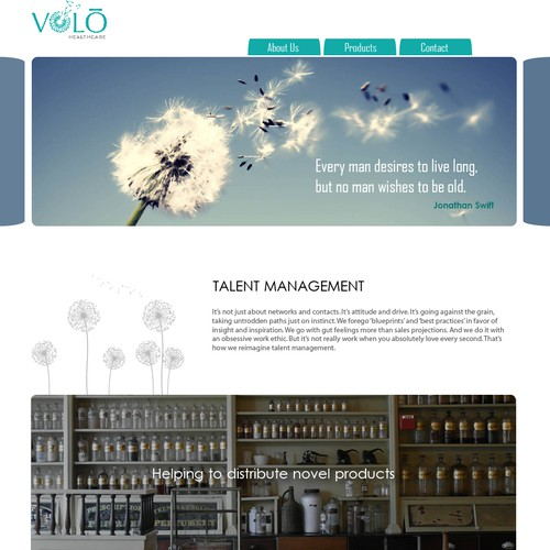 Website for VOLO