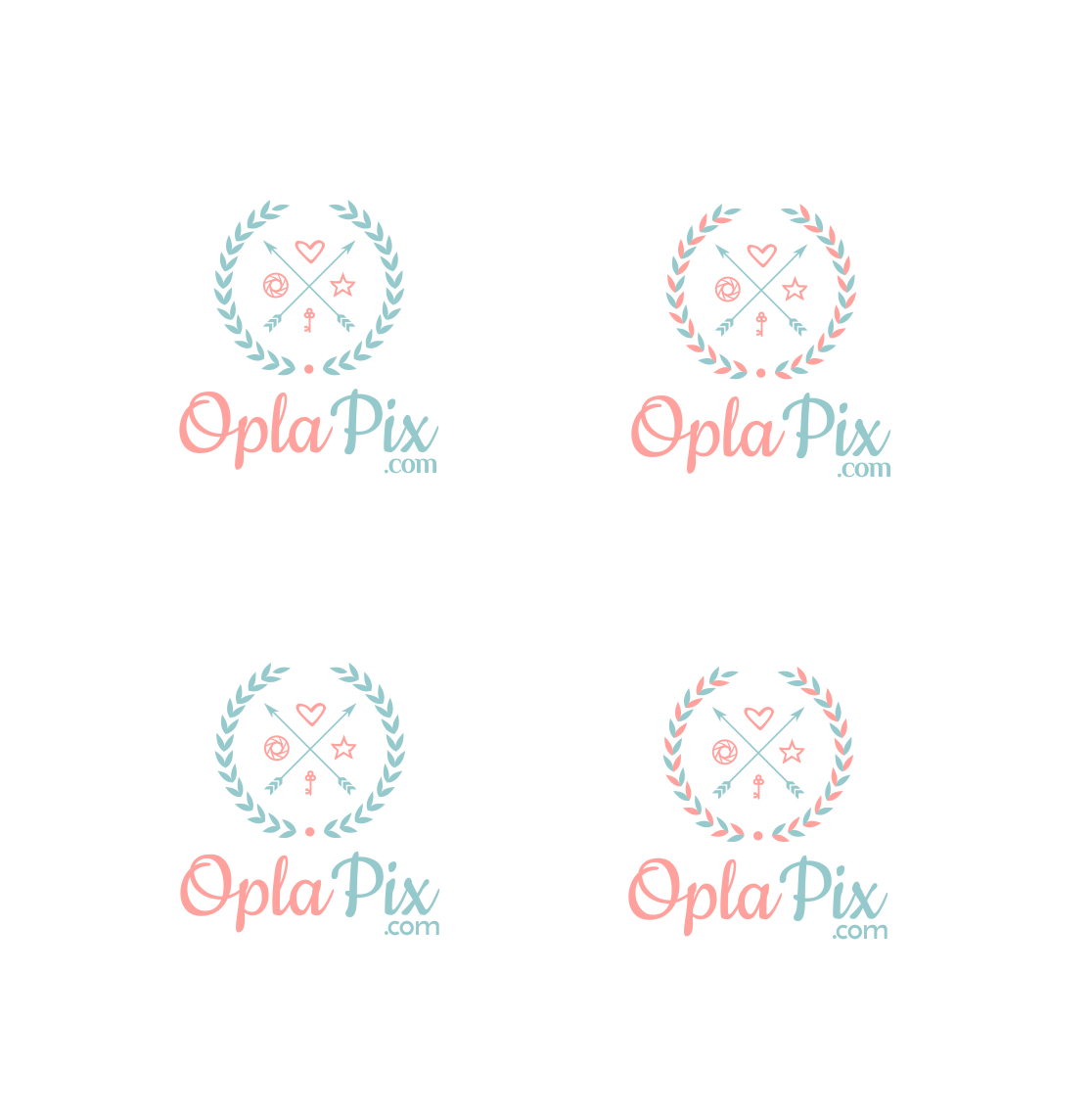 New logo for OPLAPIX
