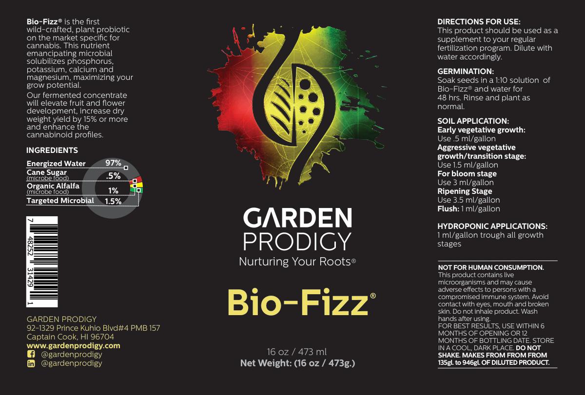 New Bio Fizz sizes
