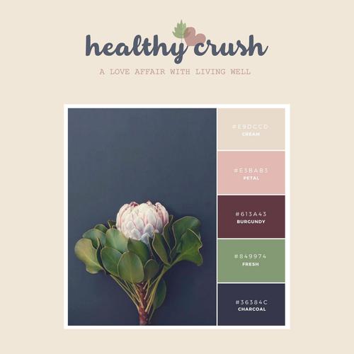 Healthy Crush Logo Refresh