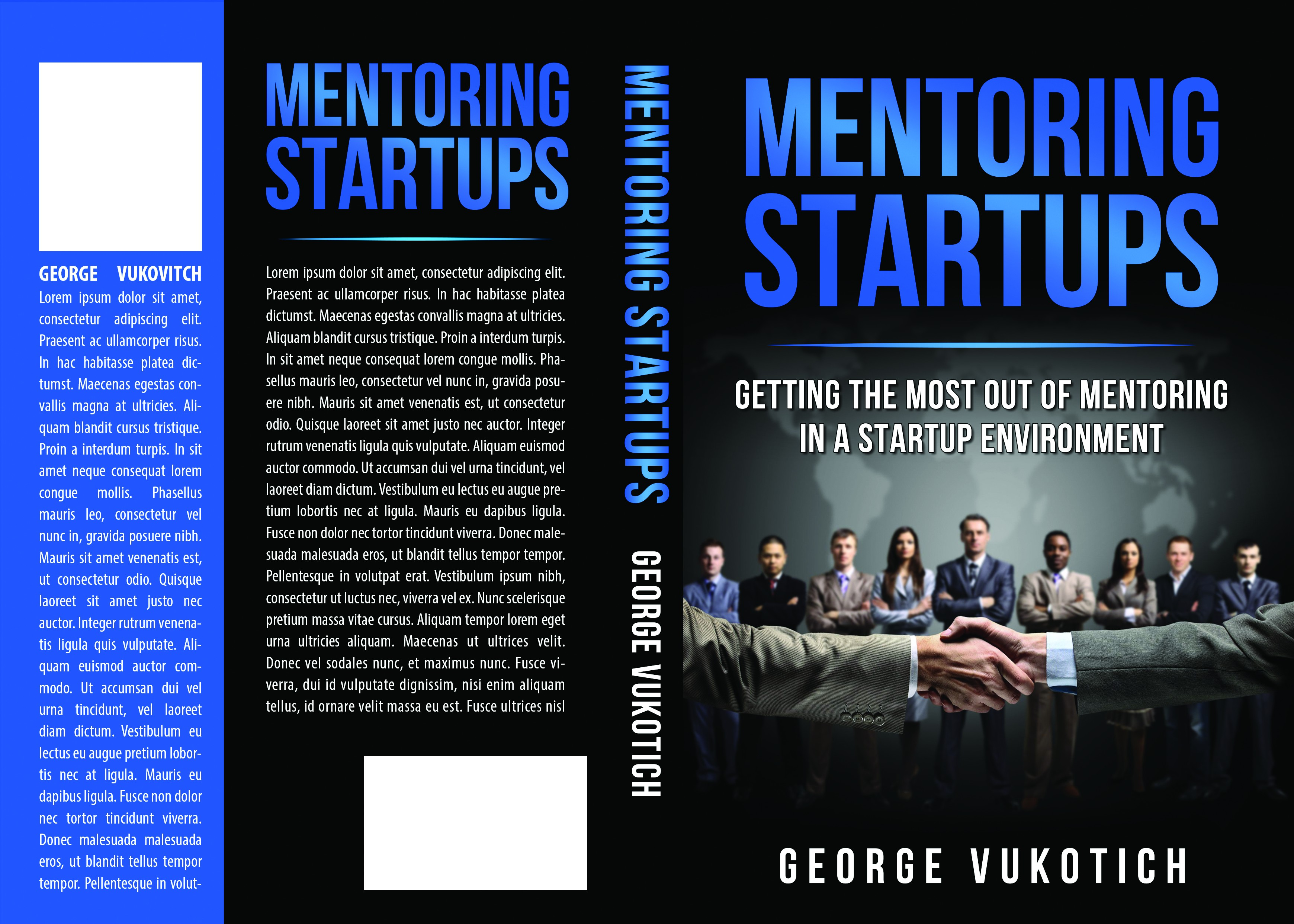 Mentoring Startups: Getting the most out of mentoring in a startup environment