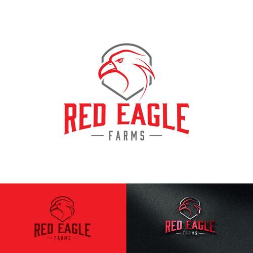 Logo concept for eagle/