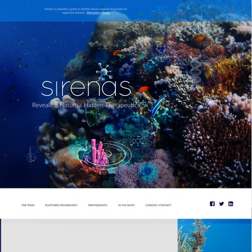 Website Header for Sirenas