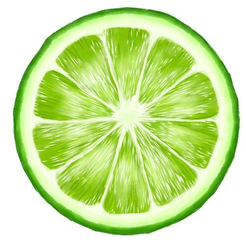 hand drawn citrus fruit slice
