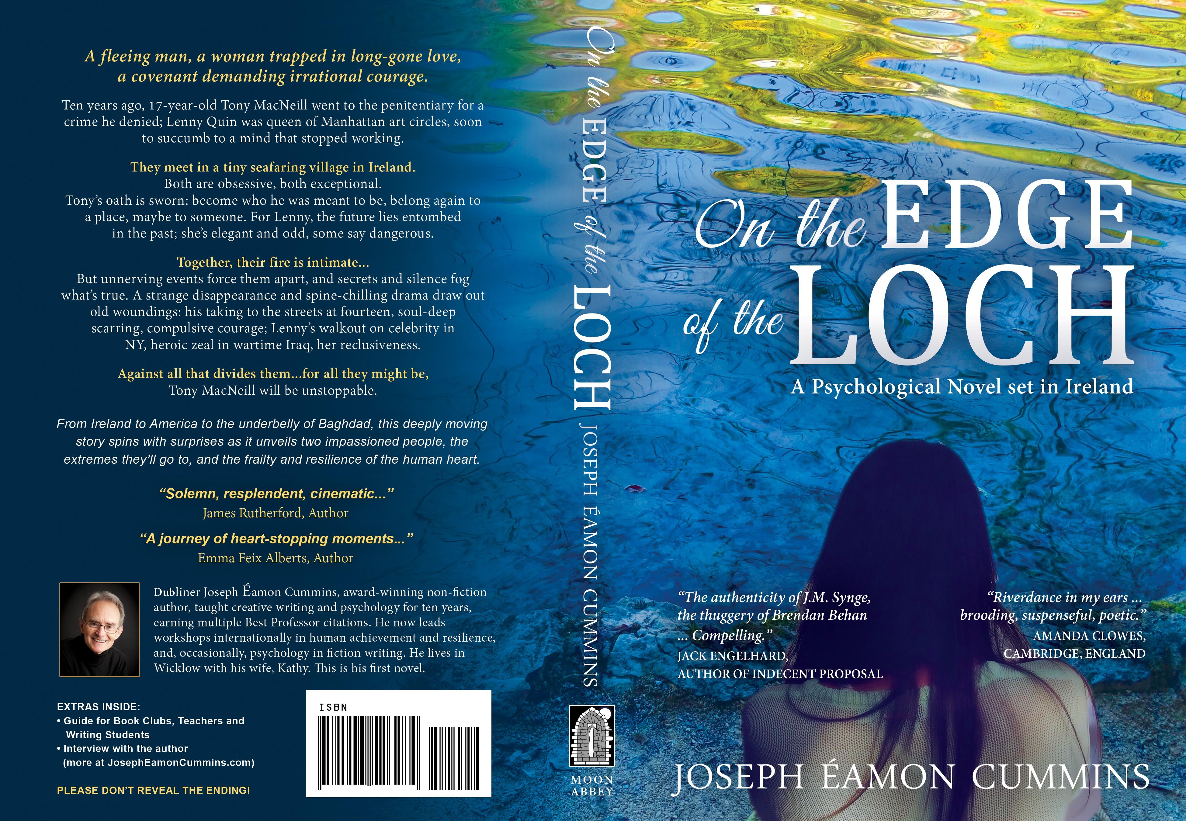 Irish Novel. Modern. Single Concept. Suggestions Provided.