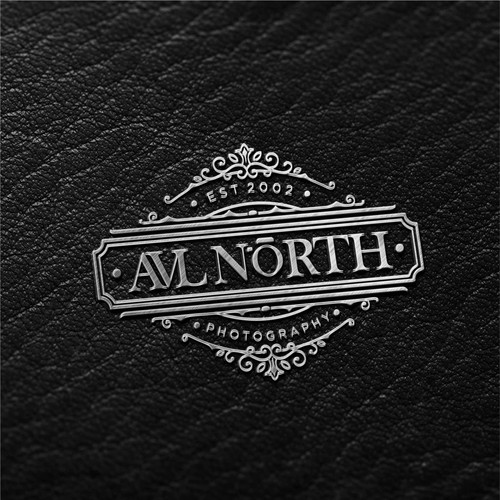 Bold logo concept for AVL North Photography