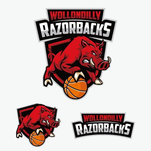 Wollondilly Razorbacks