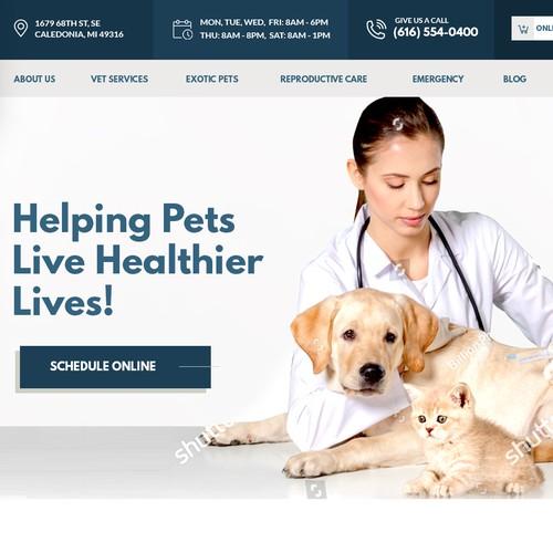 Animal Veterinary Landing page design
