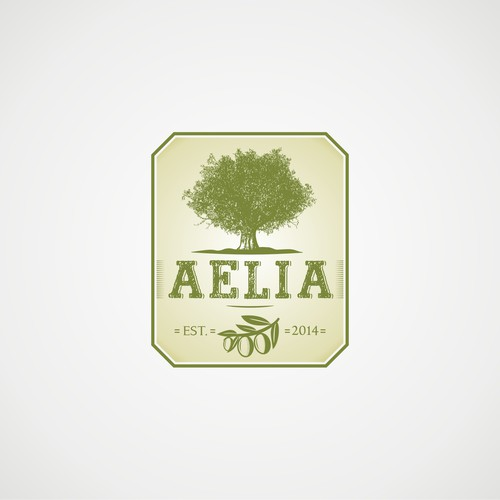 Holy land company needs logo for high quality olive oil